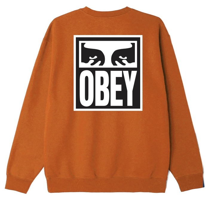 OBEY EYES ICON 2-112862142_PSC_2のコピー.jpeg
